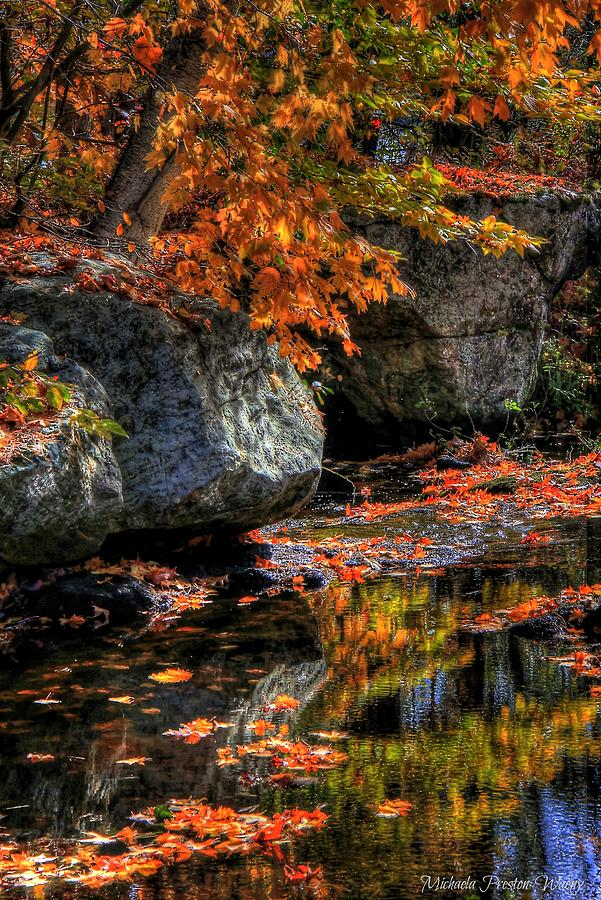Autumn by Michaela Preston