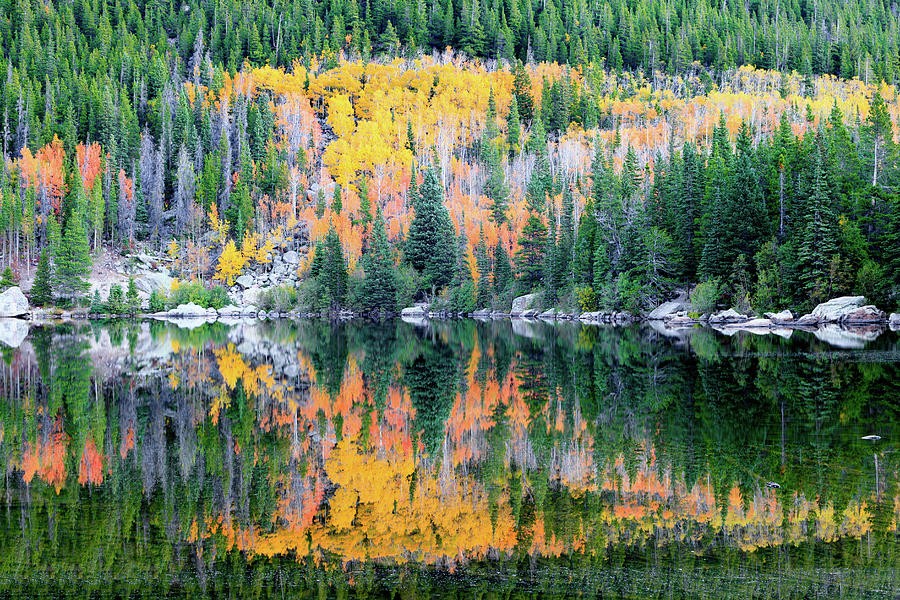 Autumn Mirror at Bear Lake by David Chandler