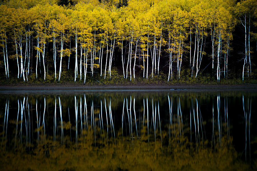Autumn Mirror by Dustin  LeFevre