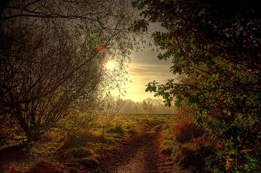 Autumn Photograph - Autumn Mist by Kim Shatwell-Irishphotographer