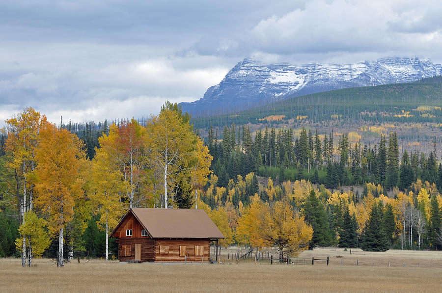 Glacier Photograph - Autumn Mountain Cabin In Glacier Park by Bruce Gourley