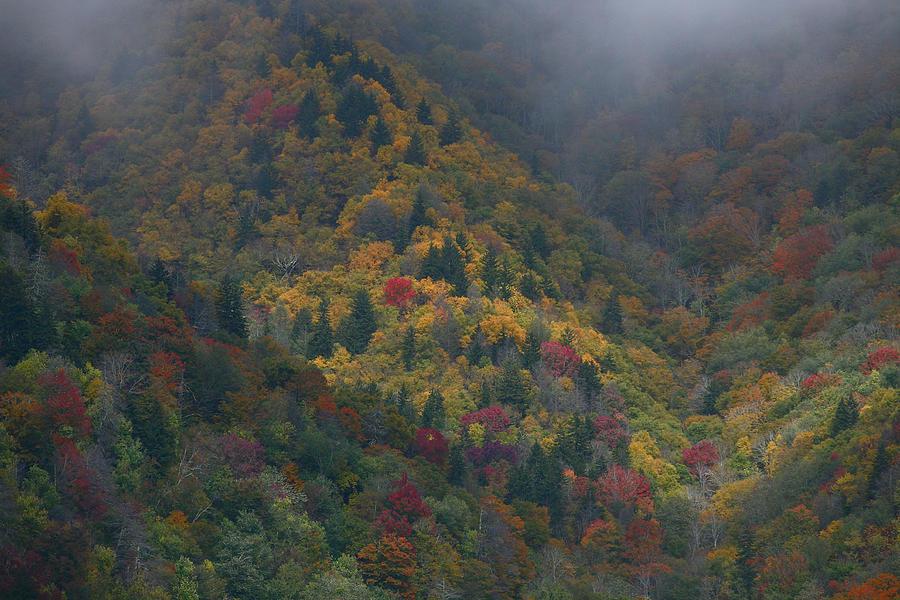 Landscape Photograph - Autumn Mountains by James Jones