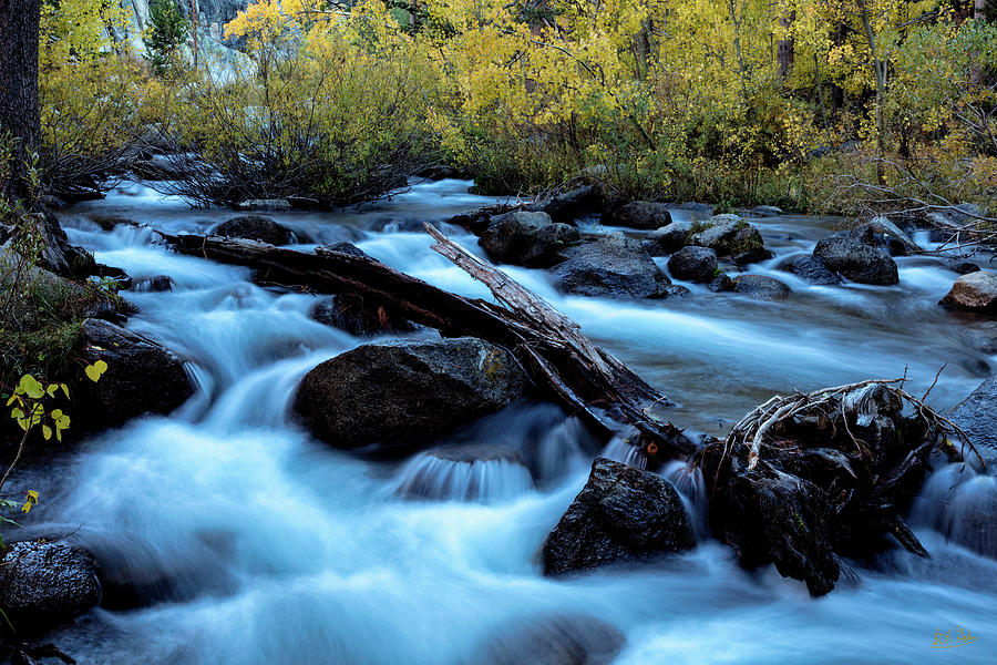 Autumn On Bishop Creek by Stuart Gordon