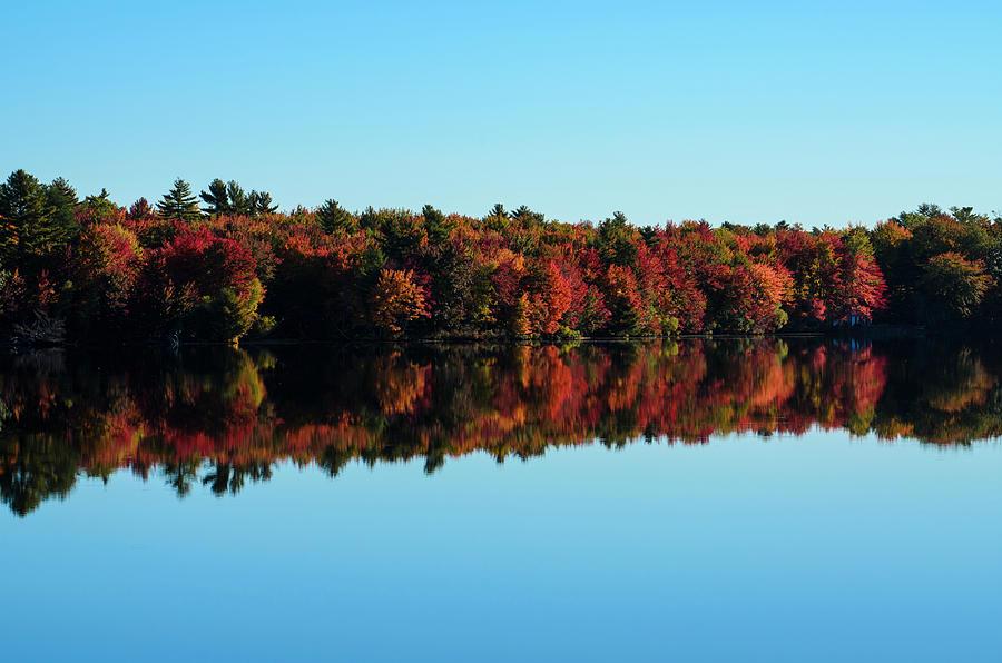 Fall Foliage Photograph - Autumn On Bonny Eagle Pond by Dan Jordan