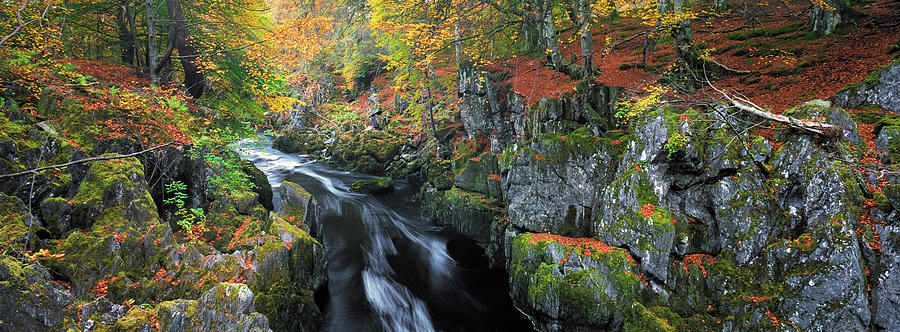 Autumn on River Esk by Dave Bowman