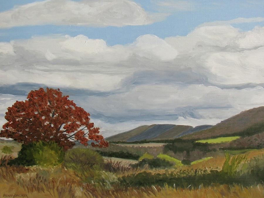 Autumn on the Slab Cabin Run Watershed by Barb Pennypacker
