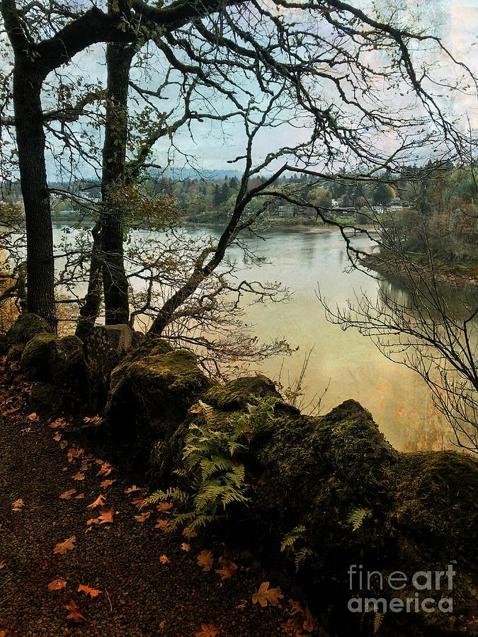 Autumn on the Willamette River by Charlene Mitchell