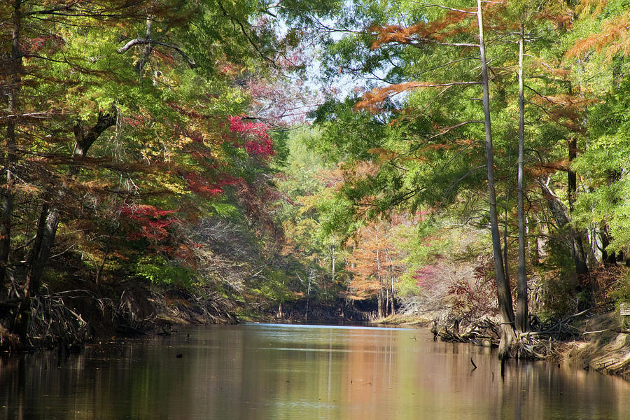 Autumn Photograph - Autumn Over Golden Waters by Lana Trussell