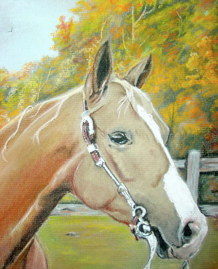 Horse Pastel - Autumn Palomino by Crystal  Harris-Donnelly