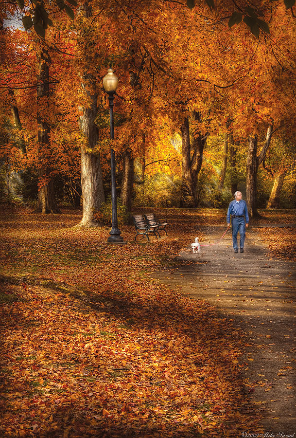 Savad Photograph - Autumn - People - A Walk In The Park by Mike Savad