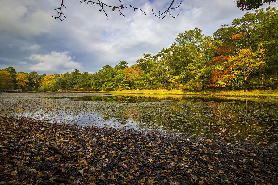 Autumn Photograph - Autumn Pond by Roderick Breem