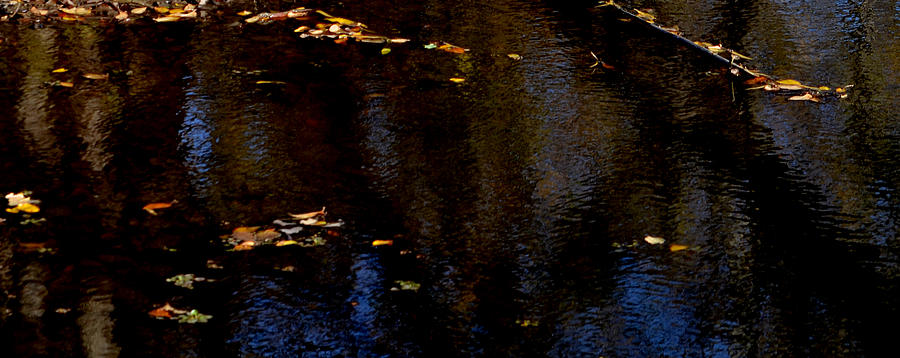 Autumn Photograph - Autumn pond by Steven Linebaugh