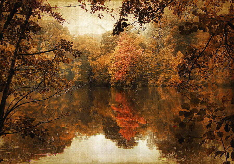 Autumn Photograph - Autumn Reflected by Jessica Jenney