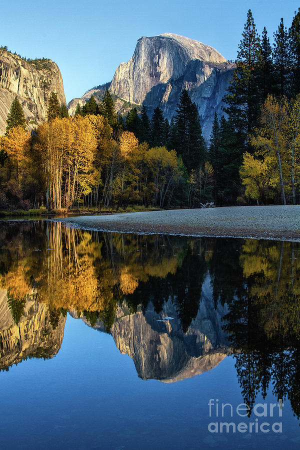 Autumn Reflection II by Anthony Michael Bonafede