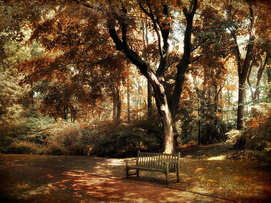 Autumn Photograph - Autumn Repose by Jessica Jenney