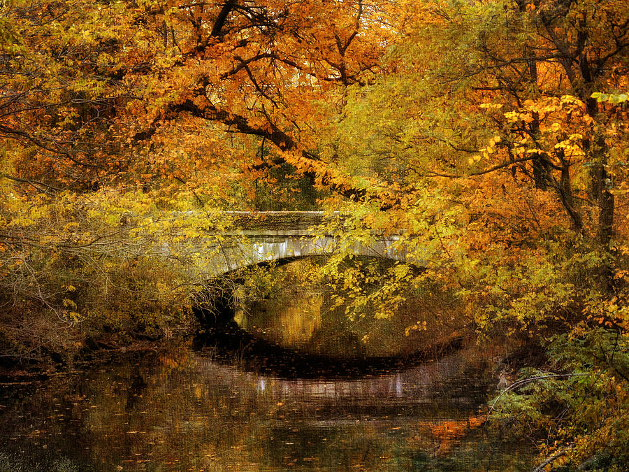 Nature Photograph - Autumn River Views by Jessica Jenney