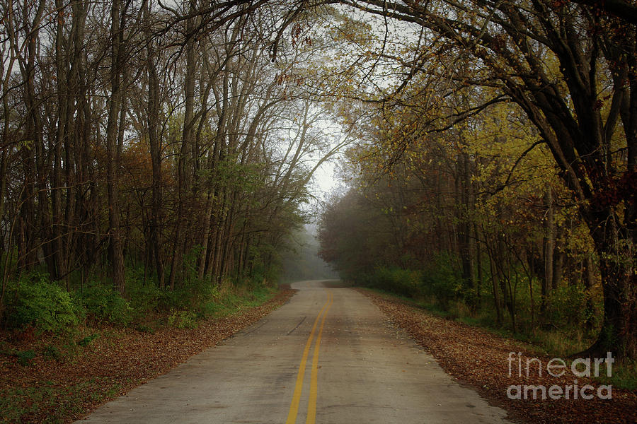 Autumn Road by Inspired Arts