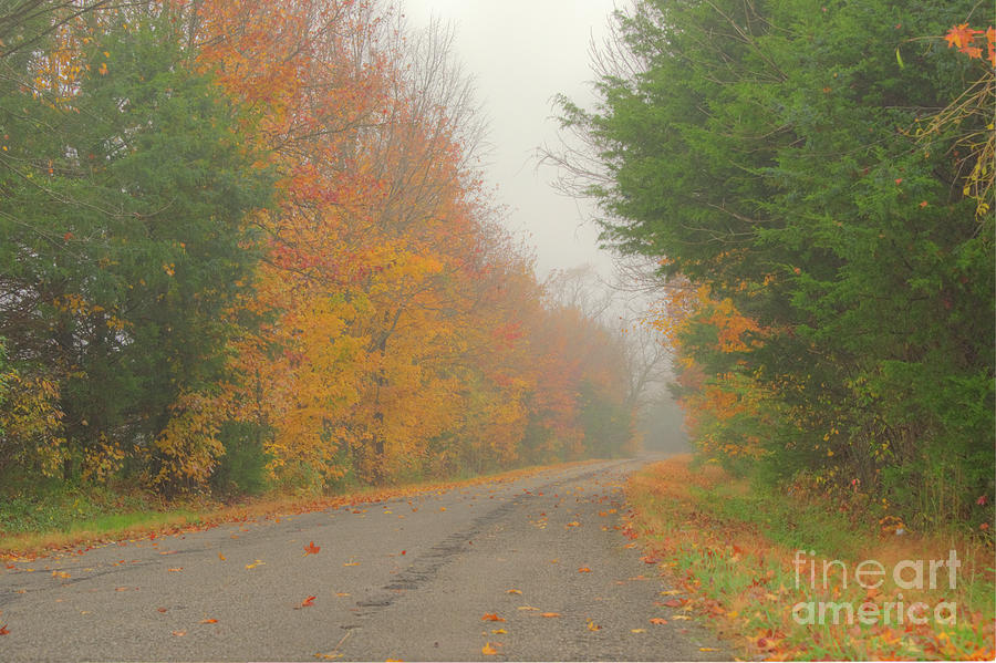 Autumn Roads by Wanda Krack