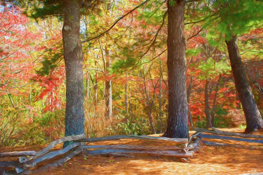 Autumn Split Rail Fence Digital Watercolor by Randy Herring