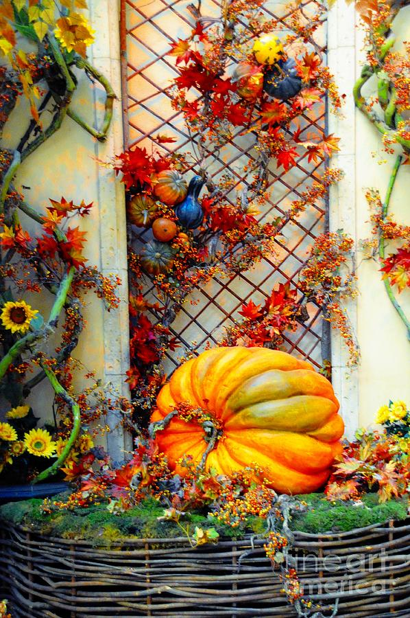 Autumn Still Life Photograph by Kathleen Struckle