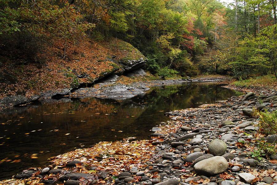 Autumn Photograph - Autumn Stream by James Elam