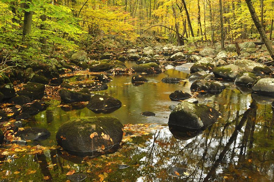 Autumn Photograph - Autumn Stream Reflections by Stephen  Vecchiotti