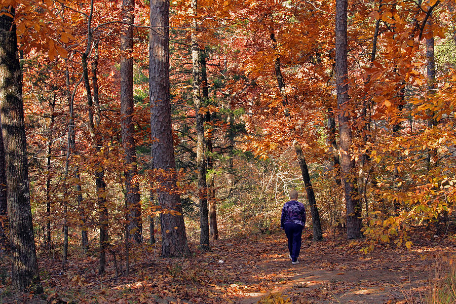 Fall Photograph - Autumn Stroll by Gayle Johnson
