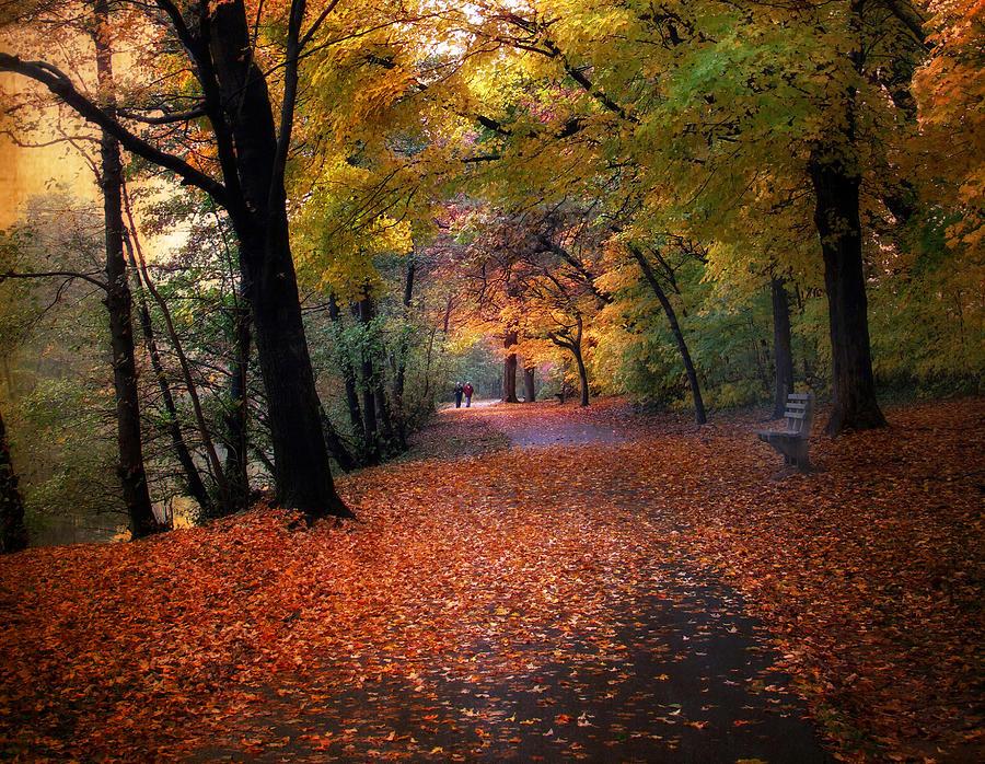 Autumn Photograph - Autumn Stroll by Jessica Jenney