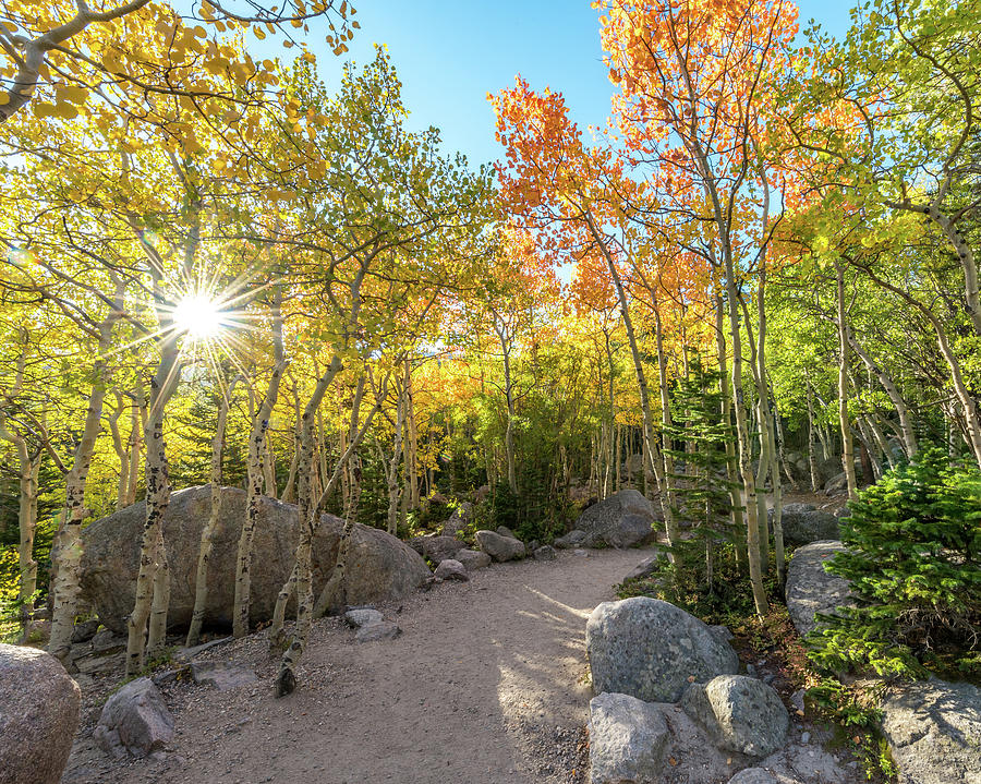 Landscape Photograph - Autumn Sunrise by Robert Yone