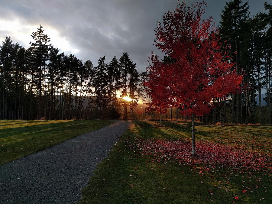 Shawnigan Lake Photograph - Autumn sunset, Shawnigan Lake by Jordan Barnes