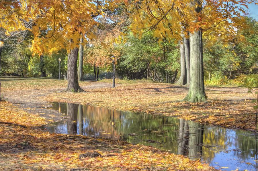 Autumn Photograph - Autumn Tranquility by Zev Steinhardt