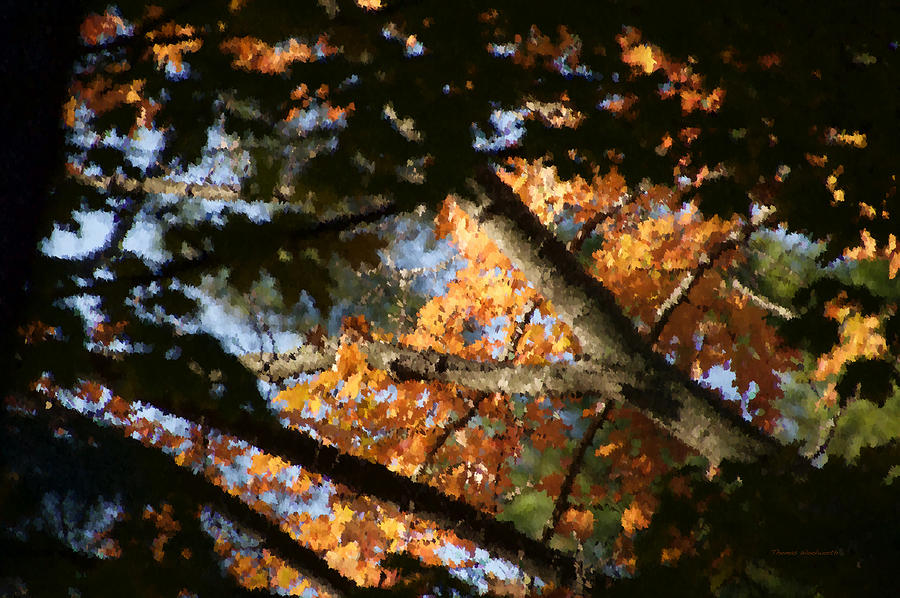 Colorful Photograph - Autumn Trees 2015 Pa 01 by Thomas Woolworth