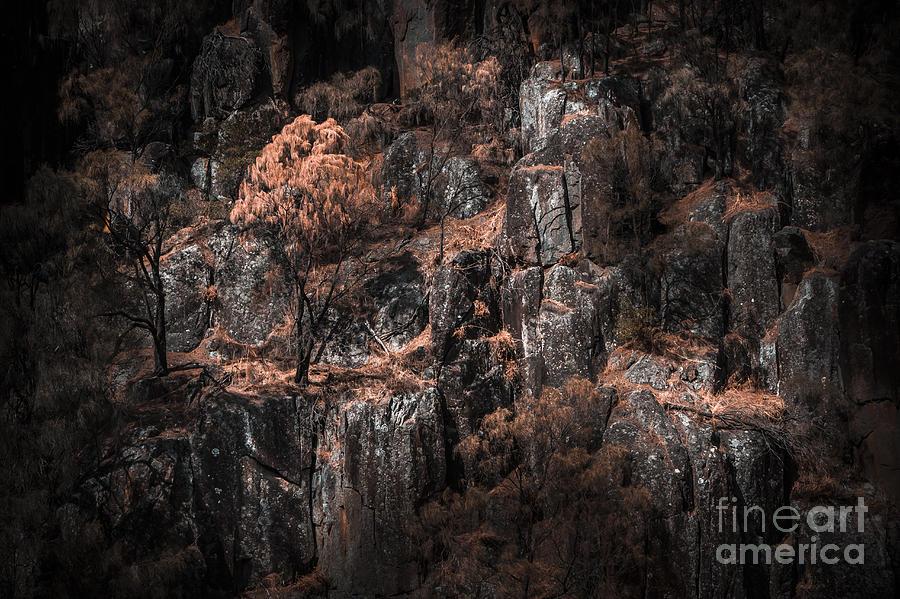Autumn Photograph - Autumn Trees Growing On Mountain Rocks by Jorgo Photography - Wall Art Gallery
