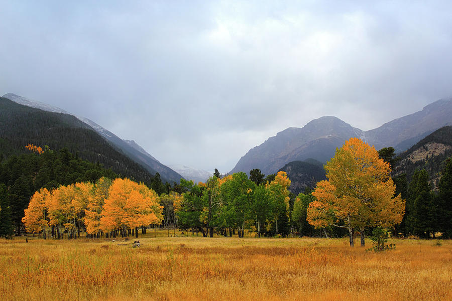 Autumn Valley Photograph by Shane Bechler