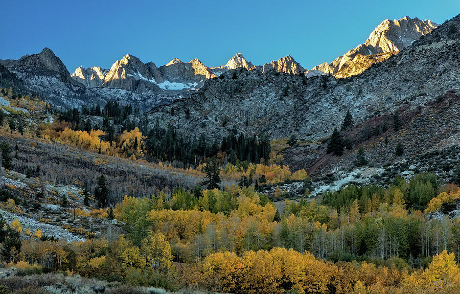 Autumn View, High Sierra by Stuart Gordon