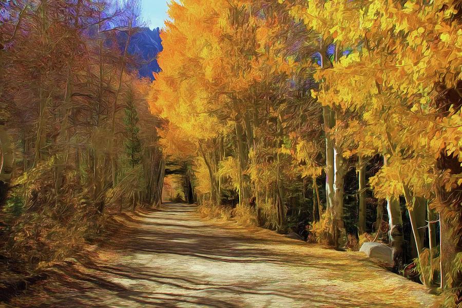 June Lake Photograph - Autumn Walk at June Lake by Donna Kennedy