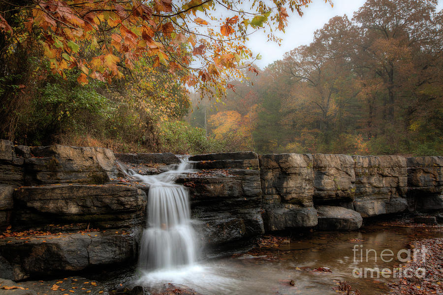Autumn Water by Larry McMahon