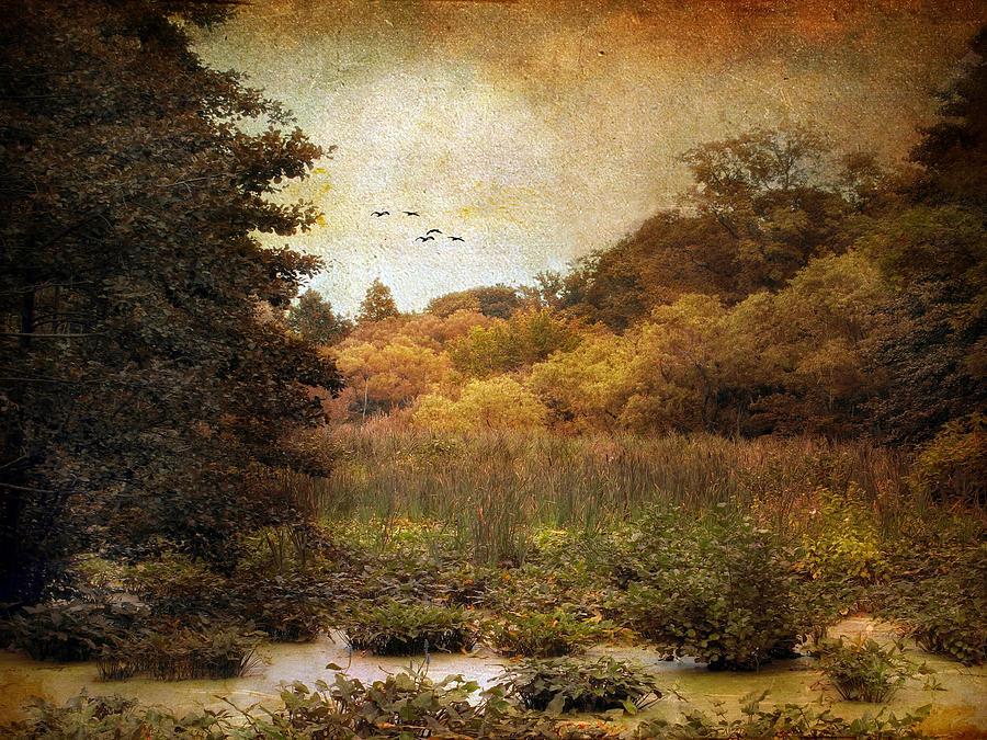 Autumn Photograph - Autumn Wetlands by Jessica Jenney