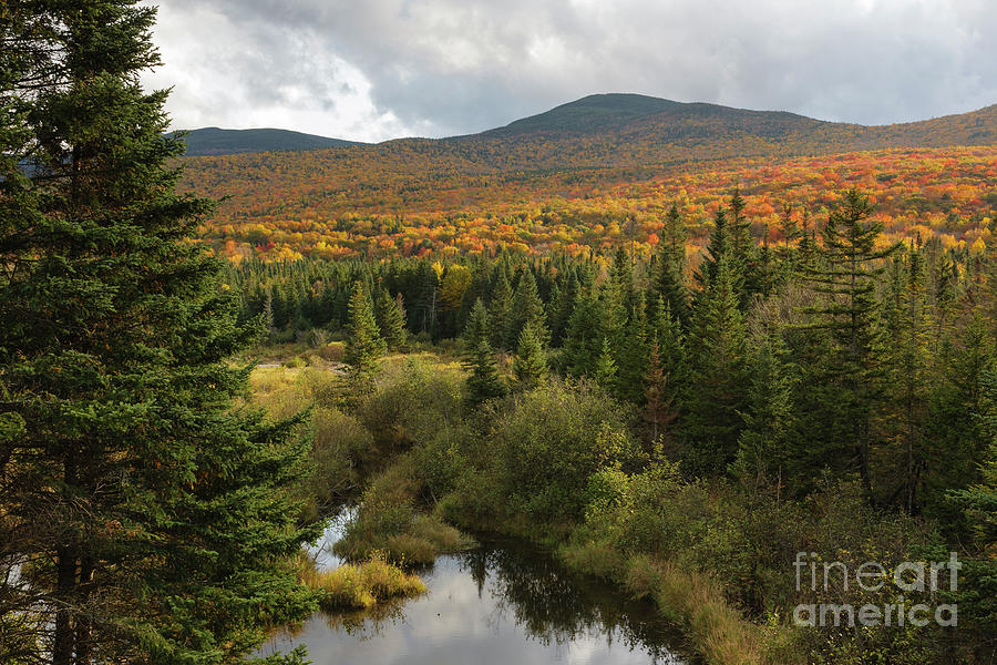Autumn Photograph - Autumn - White Mountains New Hampshire by Erin Paul Donovan
