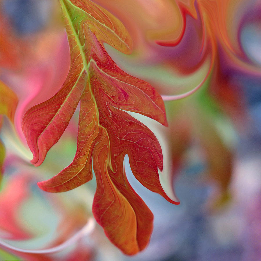 Abstract Digital Art - Autumnal Aria by Suzy Freeborg