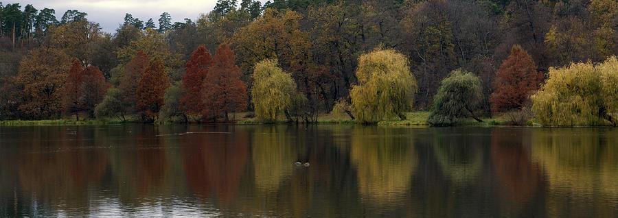 Landscape Photograph - Autumnal by Mihail Antonio Andrei