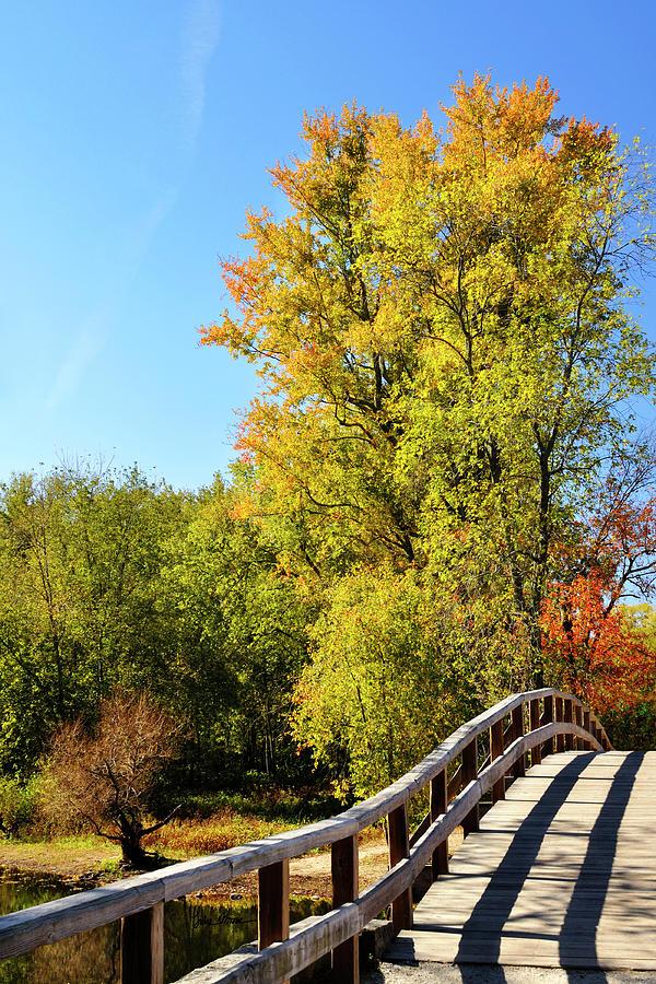 Autumn Photograph - Autumnal North Bridge by Luke Moore