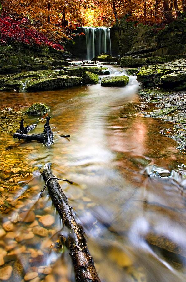 Autumn Photograph - Autumnal Waterfall by Meirion Matthias