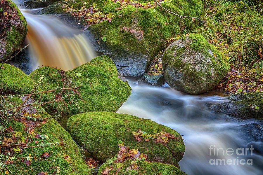 Atmosphere Photograph - Autumns Creek 2 by Veikko Suikkanen