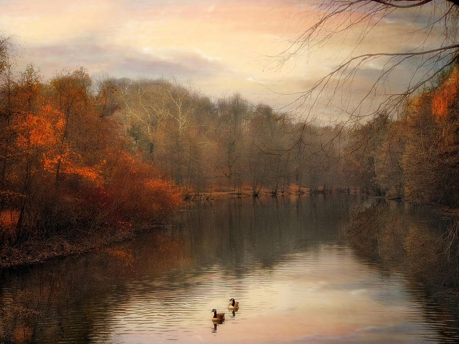 Pond Photograph - Autumns Ebb by Jessica Jenney