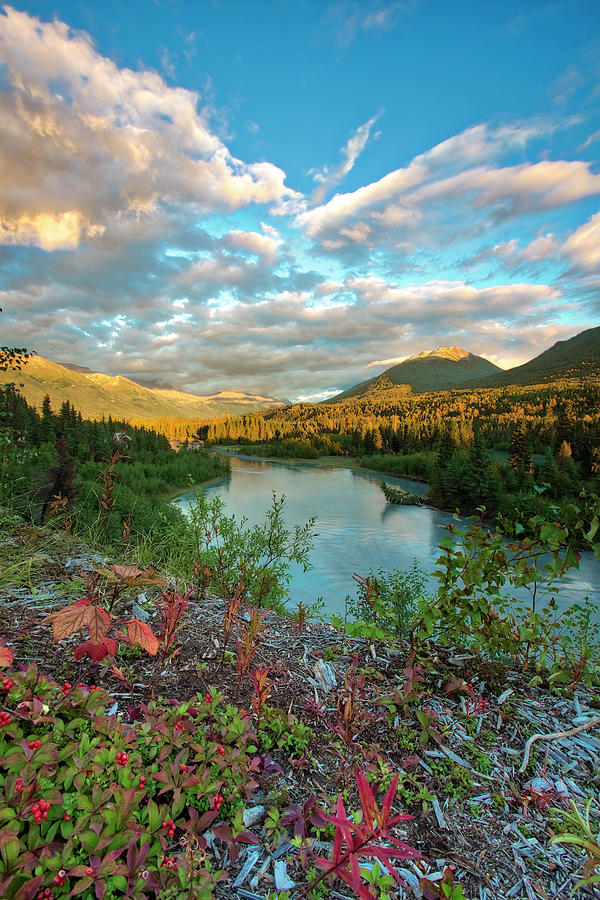 Autumn's Presence by Ed Boudreau