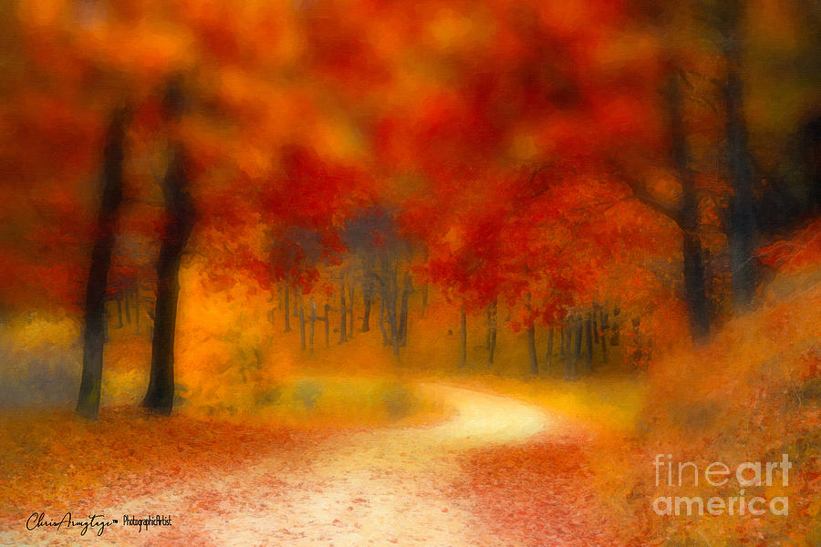 Autumn's Promise by Chris Armytage