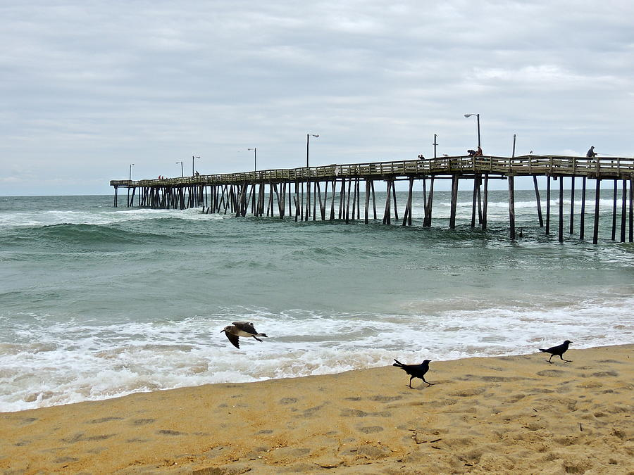 Fishing Pier Photograph - Avalon Fishing Pier by Eve Spring