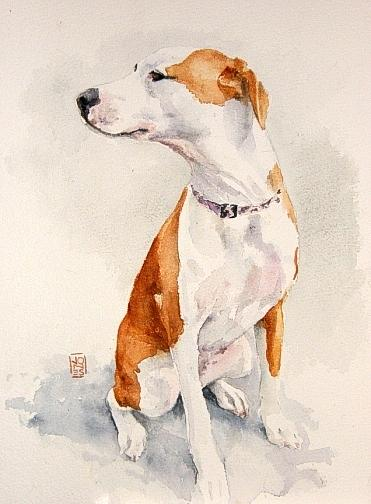 Dog Painting - Aviator by Debra Jones