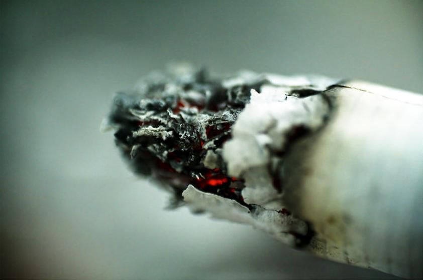 Avoid It Photograph by Andrei Constantin Visan Preda